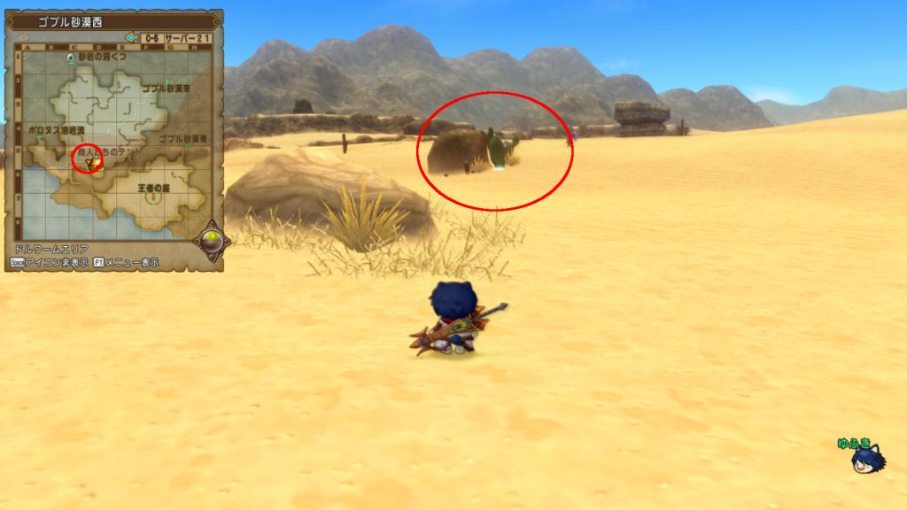 ゴブル砂漠西ビックサボテン1
